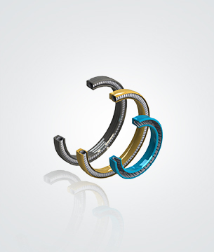 Spring Energized Seal